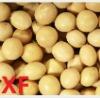 soybean/soya bean