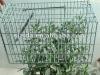 galvanized small mouse trap cage 24*12*12cm