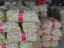 2012 5.0cm-6.0cm garlic for sale