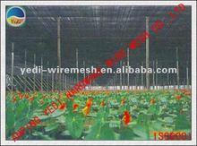 De la fábrica!!!!! Caliente!!!!! Verde y blanco de color neto de pepino/ayuda de la planta de compensación/redes sombrilla