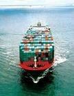 Shipping Freight From Guangdong, Xiamen, Shanghai, Ningbo, Tianjin, Qingdao, Fuzhou. Hongkong to USA newyork Houston Dalla