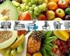vegetable, fruit processing machine /orange,mongo,pineapple,guava,bissap,grape,olive,coconut,avokado,lychee,tropical fruit