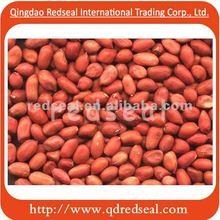 Round type red skin peanut kernels