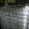 Factory in stocks Welded Wire Mesh 1/2 inch