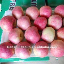 Fresh fuji apples crop in 2012