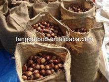 nuovo raccolto di castagne fresche