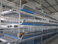 Poultry baby pullet rearing cage,automatic chicken cage syste