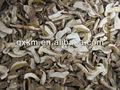 сушеные белый гриб/белыми лесных грибов 2012