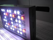 60W led for corals,reef,saltwater, pet shop,3w cree led aquarium light