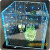 KAHO Eye-catching LED glass bricks