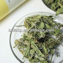 High Quality Organic Stevia--Stevioside