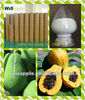 Natural Enzyme Papaya plant Extract Papain Food Enzyme Dietary Supplement
