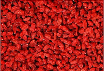 High Quality Wolfberry extract C5H11NO2 107-43-7