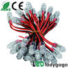 Christmas decoration LED pixel light