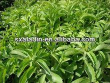 Stevia Rebaudiana 97%,Rebaudioside A,C38H60O18, CAS NO.:91722-21-3,Stevia Extract