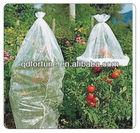 tomato growing plastic bag
