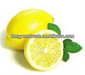 2012 safra limão chineses na venda