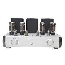 Fountek vacuum tube integrated amplifier