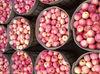 fresh blushed fuji apples GRADE A-2012 Qixia /Penglai new crop --12710