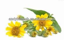 High Quality Plant Extrat Arnica P.E. 5% flavones
