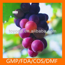 Health supplement grape seed extract supplement
