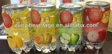 340ml Fruit Flavor Sparkling Water