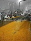 orange juice material orange sacs/pulp/concentrate,and pomelo sacs/pulp