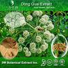 Dong Quai Extract 1%, 2% Ligustilide