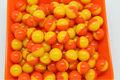 cores dobro de casca de laranja e amarelo shell de paintball