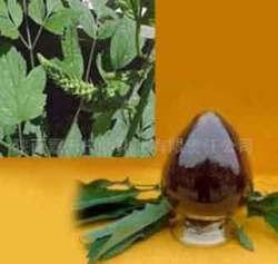 Natural Black Cohosh P.E. 2.5%