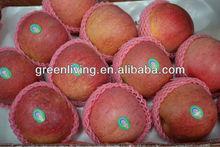 2014 china apple fruit market
