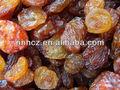 Prezzo di uva passa, uvetta sultanina, california uvetta