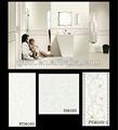 Sala de estar cerâmica telhas da parede