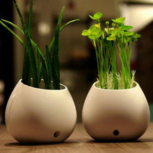Potted Plants LED Night Light