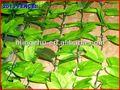 2013 Pvc valla superior 1 jardín exterior de la decoración del ornamento pequeño decoración de jardín de plástico maceta para cuarto de niños plantas