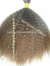 Top quality 100% virgin malaysia curly bulk hair