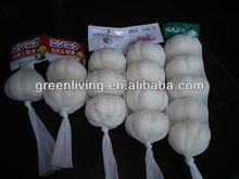 2012 jinxiang garlic so popular in world