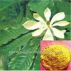 Magnolia extract Honokio 2%-99% HPLC manufacture herbal extarct