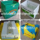 Corrugated Plastic Box, Corex Box,CartonPlast Box