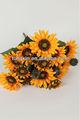 Ipek çiçeği ayçiçeği b27591 Tedarik plastik