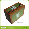 Lifepo4 36V 21Ah Electric Bicycle Battery Pack