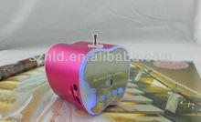 Support TF card USB FM radio portable mini speaker T-2012