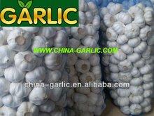 """Supply 5.0cm Fresh Pure White Garlic"", Garlic Exporter"