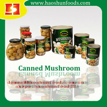 850G Salted Canned Mushrooms whole
