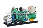small biogas generator 15kW