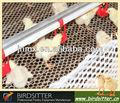 Caliente la venta de aves de corral automática del sistema de agua para el pollo y de pollos de engorde y criador de la freza