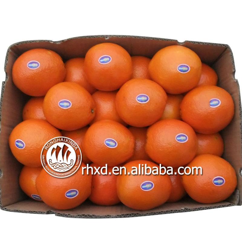 اسم من جميع الفواكه الصفراء الليمون فاكهة الحمضيات الافندي البرتقال السرة
