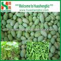 Nuova stagione diiqf edamame kernel/congelati kernel di soia verde