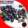 High Quality and Low Price 5:1 Purple-red Acai Berry Powder