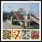 Factory supply cassava flour production